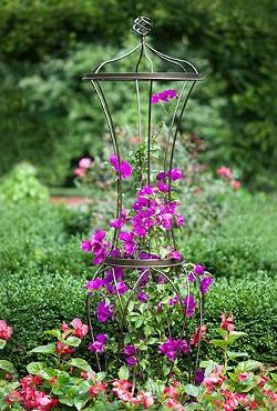The Avignon Trellis combines art and utility, housing your plants within a beautiful, curved steel framework with clean, contemporary lines- results in a functional work of art for your garden.
