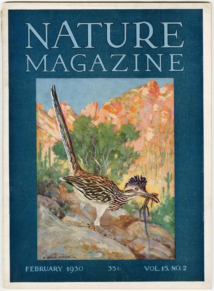 Nature Magazine  S