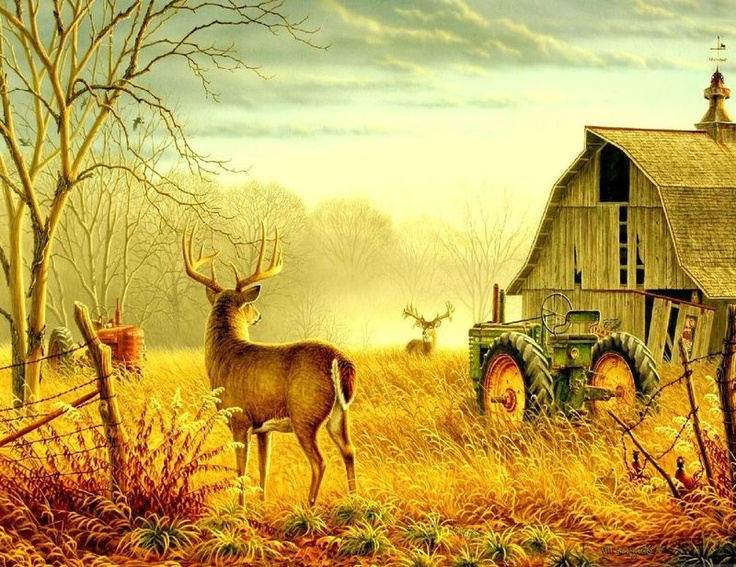 Barn with john deere and deer barns around the barn for Deer scenery