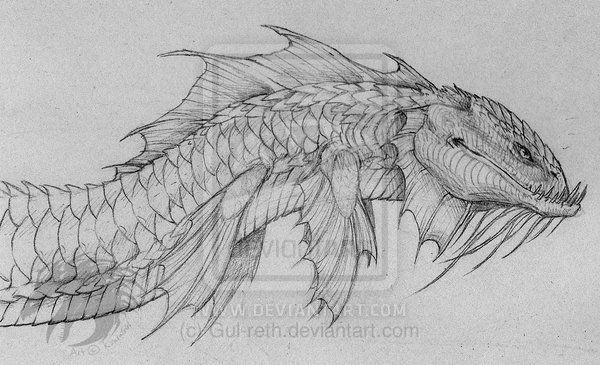 sea creature drawings ...