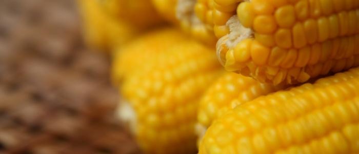 Satisfying Summer Corn Chowder | ok... so i cook in a cauldron | Pint ...