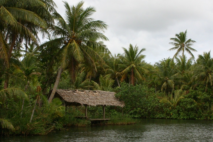 Jungle river cruise photography guam