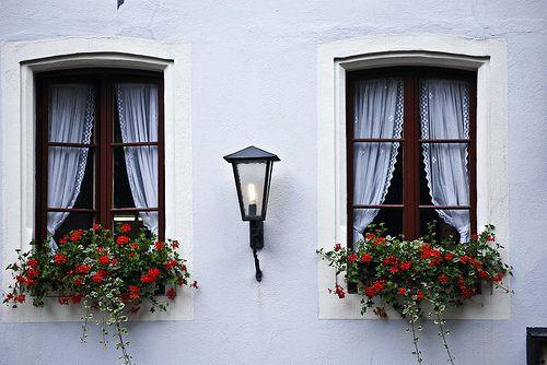 Window - English-Spanish Dictionary - m