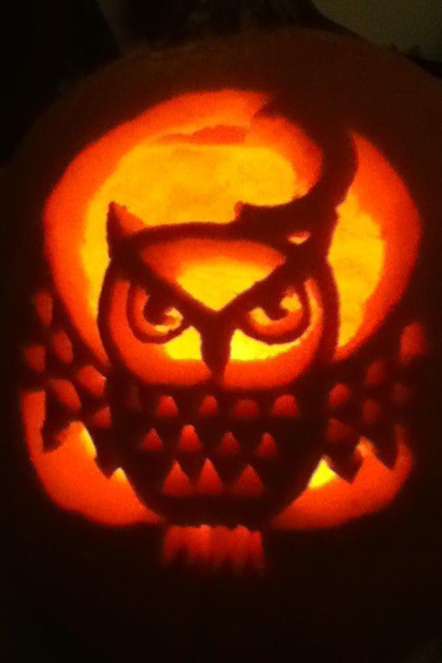 Owl pumpkin carvings halloween pinterest