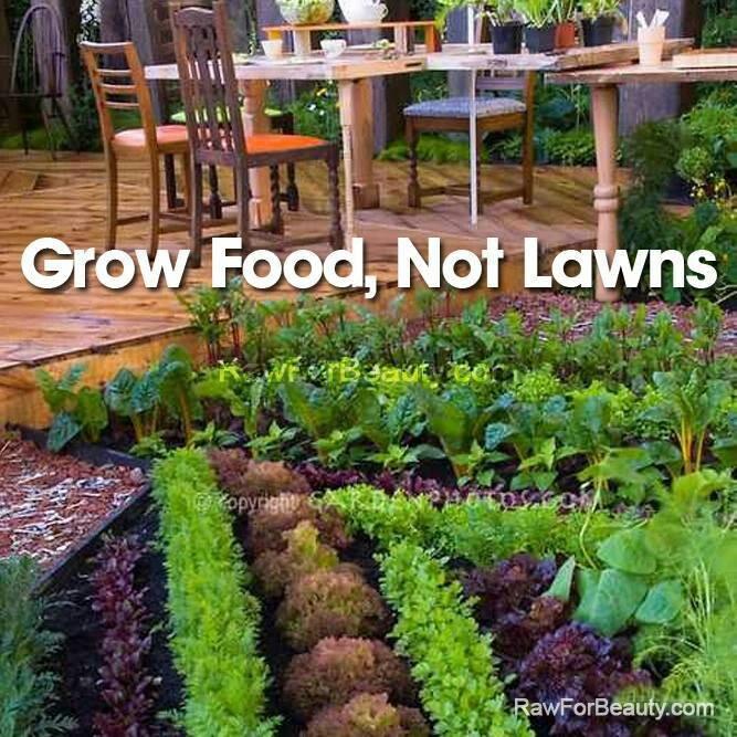Grow Food Not Lawns Garden Pinterest 640 x 480