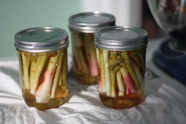Pickled Spring Onions Recipe — Dishmaps