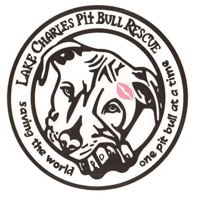 pin by malissa jones on pit bull rescue pinterest