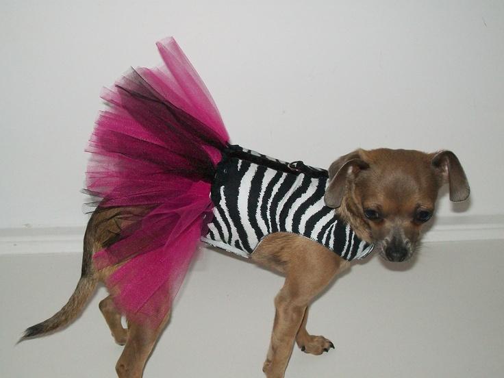 Zebra TUTU Dress