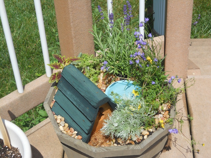 """Fairy garden I created with my daughter. Has a little bird house, and a """"pool"""" for the fairies that come visit."""