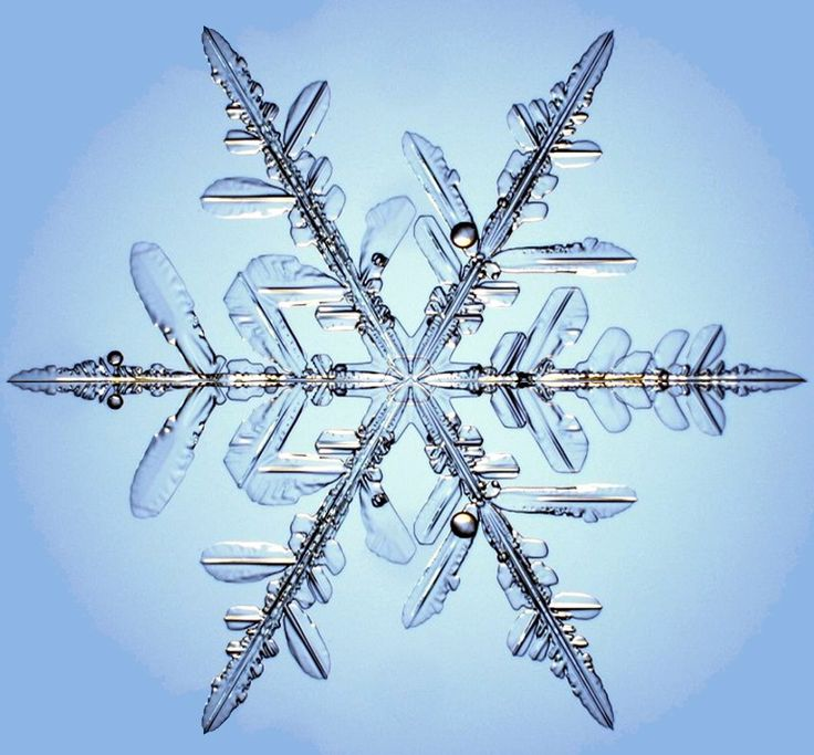 Microscopic close up of real snowflake