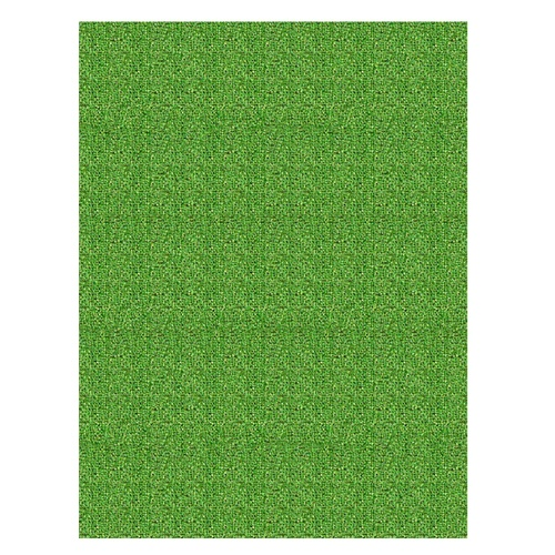 Shop Shaw Living 6 x 8 Grass Promo Casual Area Rug at