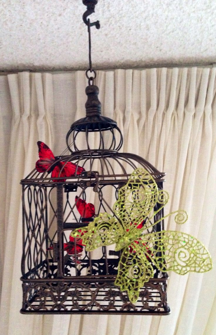 Monarch Butterfly Cage for Raising Butterflies Indoors