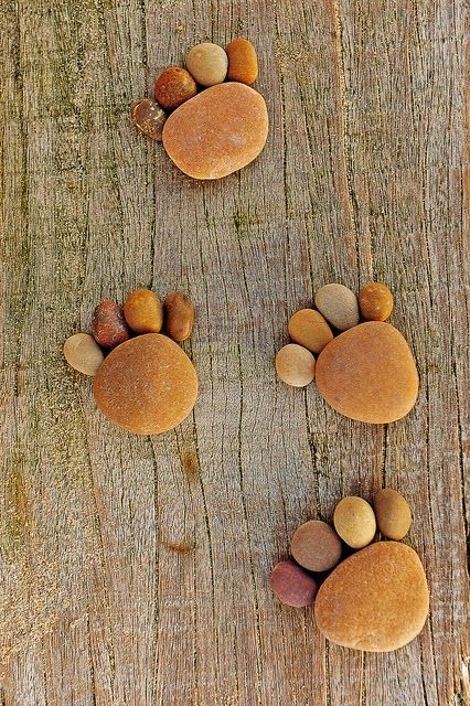 Diy projects stone footprints craft garden dreams for Diy stone projects