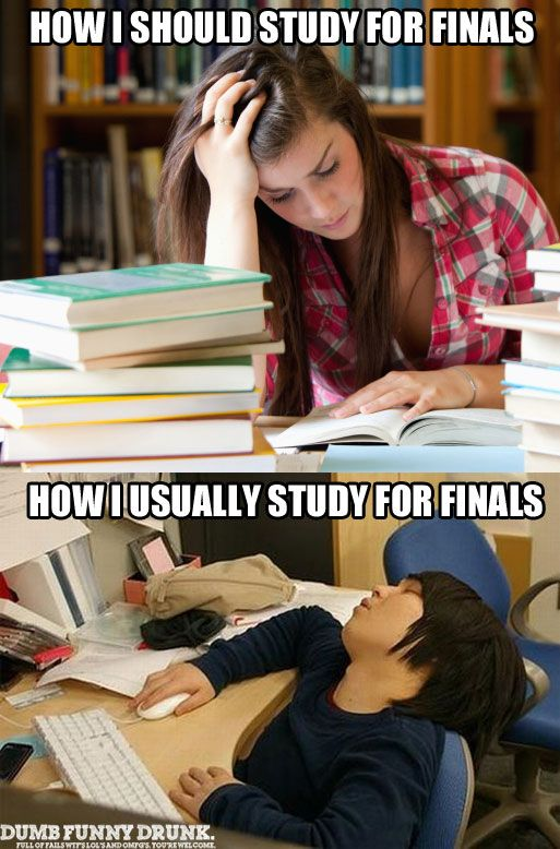How I Should Study For Finals #funny | Funny Pictures And Memes | Pin ... Studying For Finals Funny