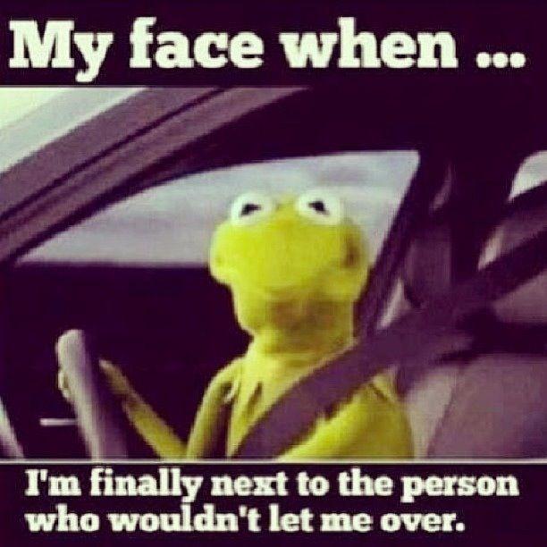 Kermit The Frog Meme Driving Having Drive Qu...