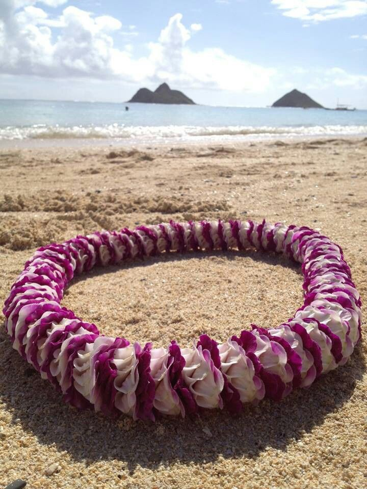 aloha island lei coupon