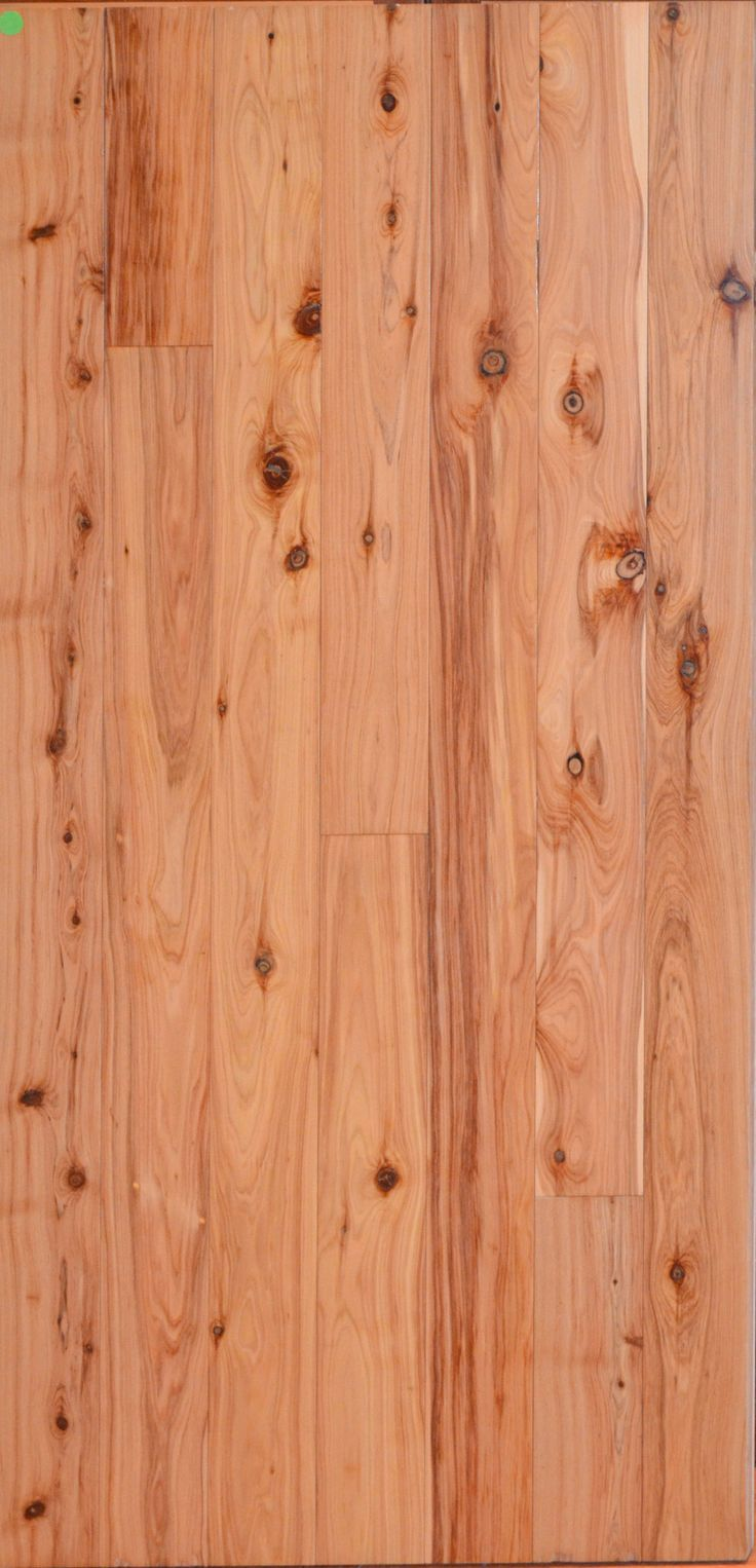 Australian cypress our exotic hardwood flooring pinterest - Australian cypress hardwood ...