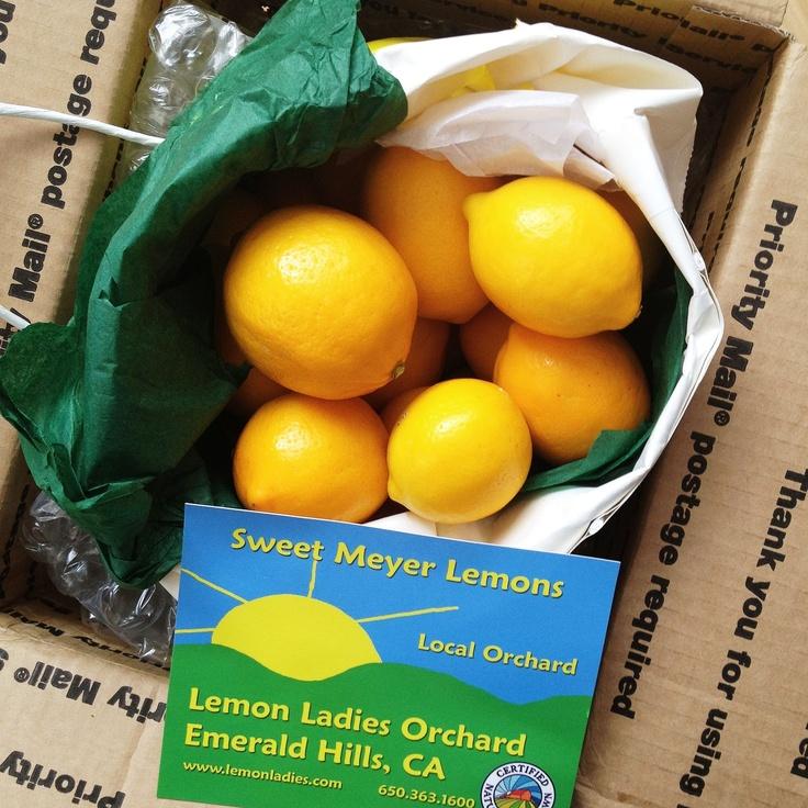 for preserving Meyer lemons (recipe: Meyer Lemon Finishing Salt