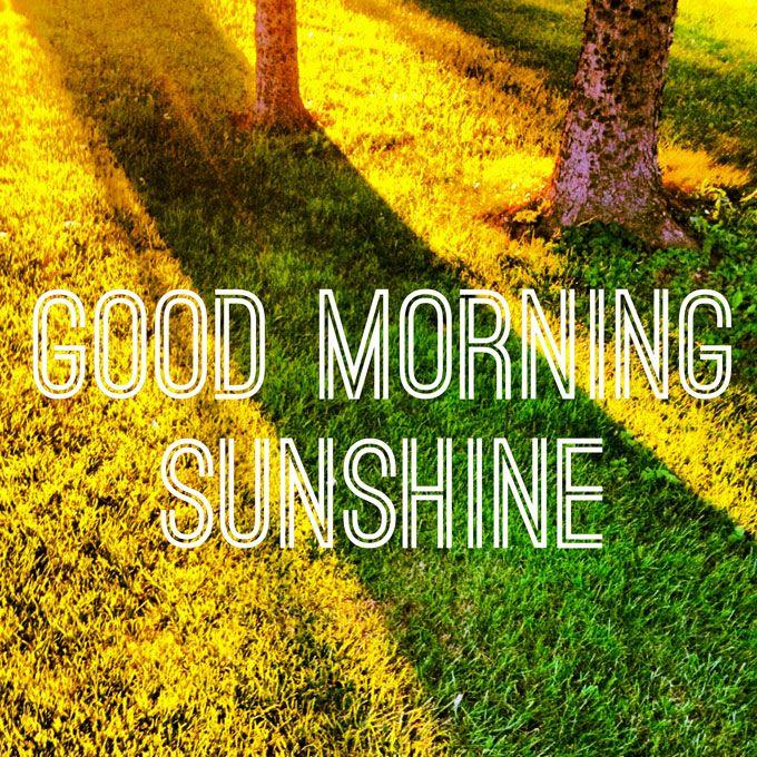 Good Morning Sunshine Words : Good morning sunshine quotes pinterest