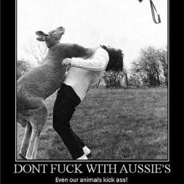Don't fuck with Aussies