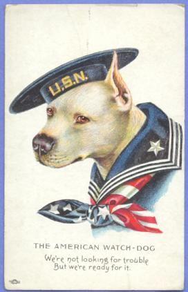 American watchdog