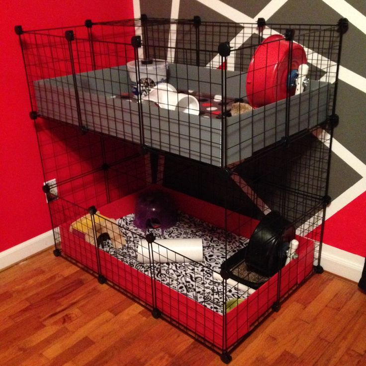 New C&C Cage for Hedgehogs
