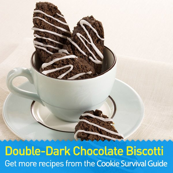 Double-Dark Chocolate Biscotti: an easy chocolate cookie treat perfect ...