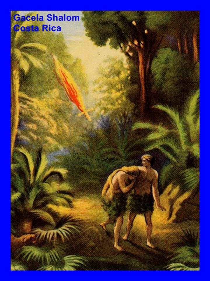 """adam and eve and god Adam and eve fall into sin - the serpent was more clever than any of the wild animals the lord god had made the serpent said to the woman, """"did god really say, 'you must not eat fruit from."""