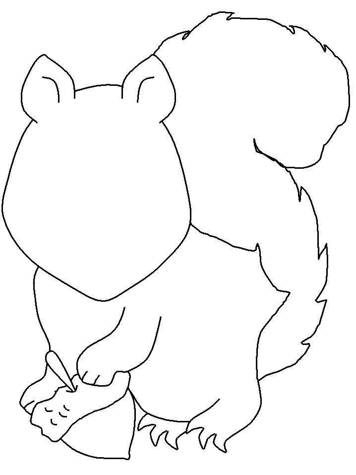 Squirrel Details Coloring Pages