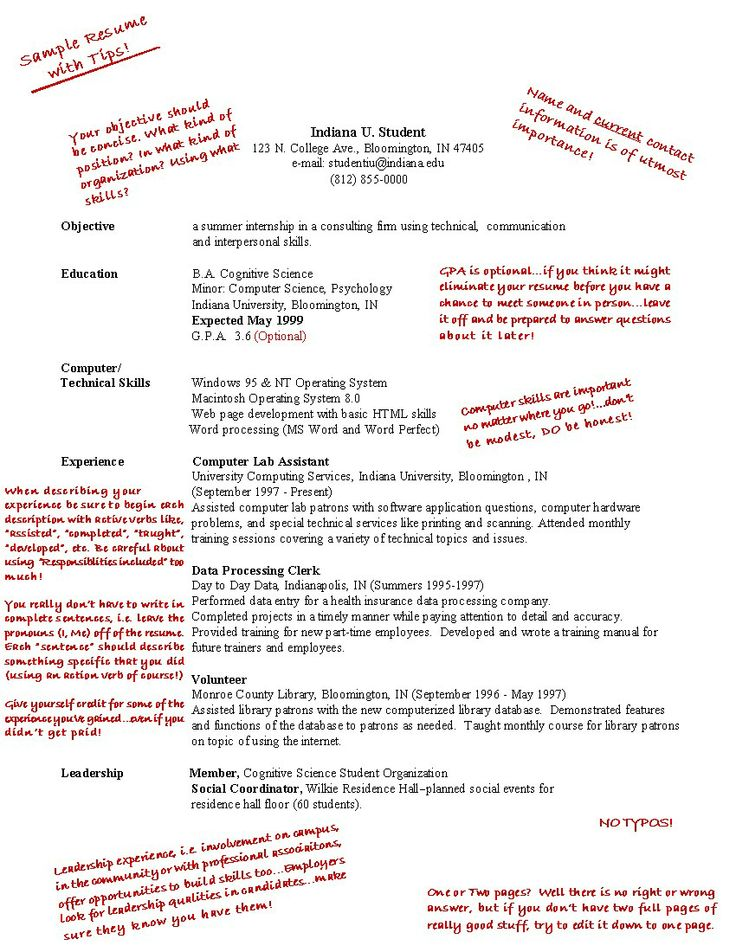 resume for first job - First Job Resume Examples