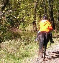 online dating equestrians