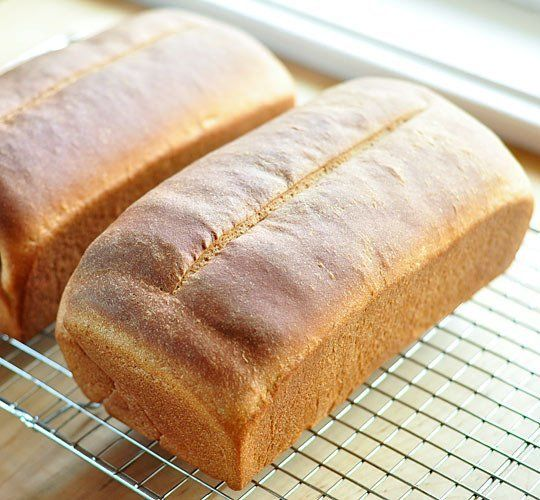 How to Make Basic Whole Wheat Bread Cooking Lessons from The Kitchn ...