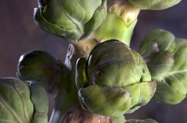 Brussels Sprouts with Bacon, Roasted Red Pepper and Pine Nuts Recipes