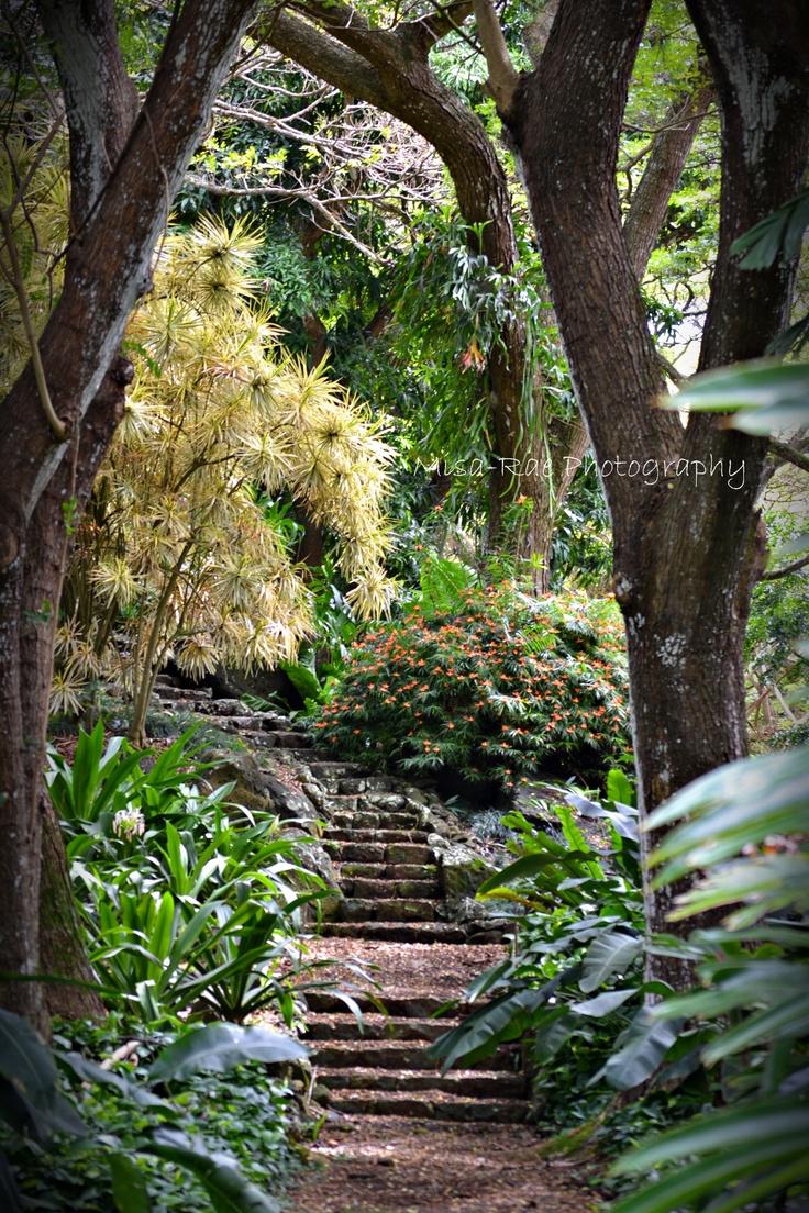 Botanical Gardens Kauai National Botanical Gardens Lawai Kauai Hawai I National Tropical