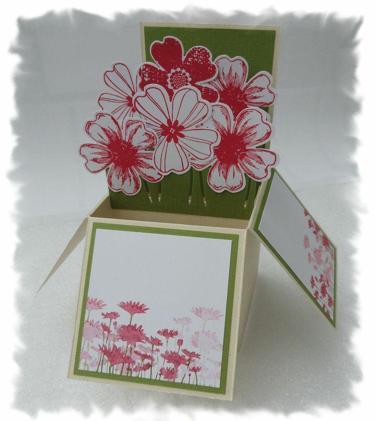 pop up card card box. Black Bedroom Furniture Sets. Home Design Ideas