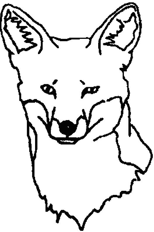 Fox Face Line Drawing : Fox face coloring pages