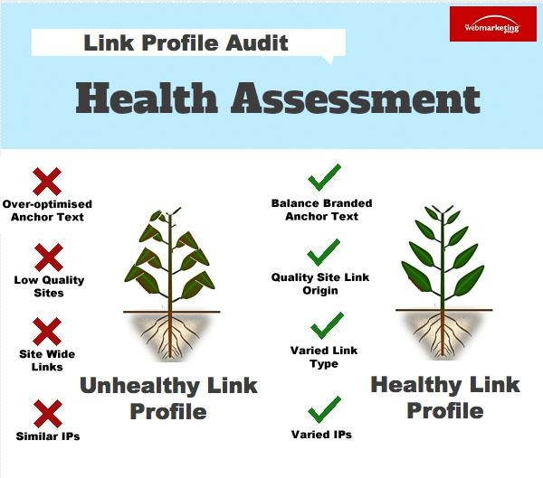 Healthy link profile infographic