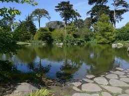 San Francisco Botanical Garden at Strybing Arboretum Always, always, worth a visit. A favorite picnic spot on a sunny day in THE city. http://www.sfbotanicalgarden.org/