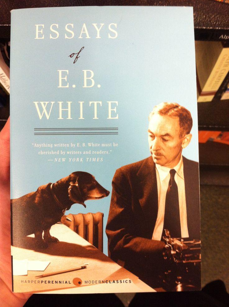 Essays On Whiteness