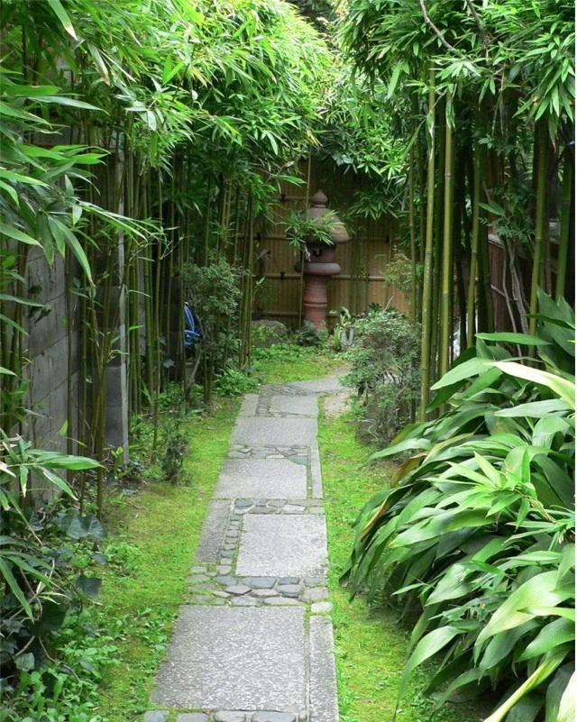 Japanese stone garden path gardening nature pinterest for Japanese garden path