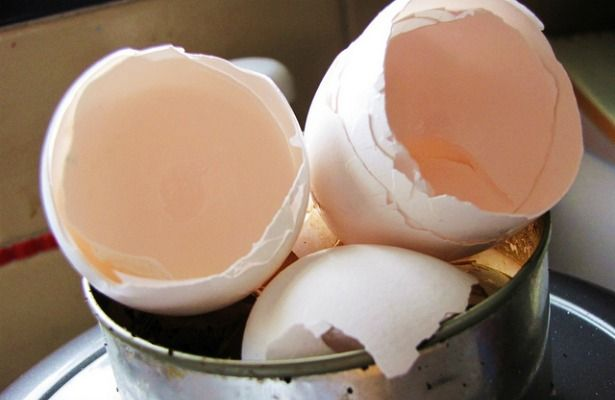 A group of researchers is working to turn eggshells into plastic. Crazy!