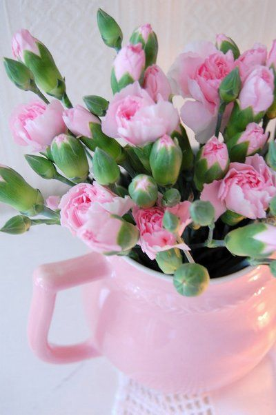 What a simple and sweet idea - mini carnations in a mug! Mini Carnations are affordable, hardy, and come in a variety of colors year-round at GrowersBox.com.