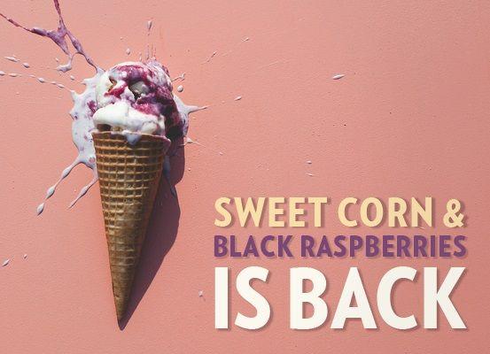 ... Back, Sweet Corn & Black Raspberries | Jeni's Splendid Ice Creams