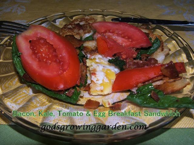 Bacon, Kale, Tomato & Egg Sandwich | Savory Recipes | Pinterest