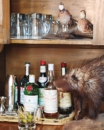pinterest discover and save creative ideas taxidermy decor the cavender diary