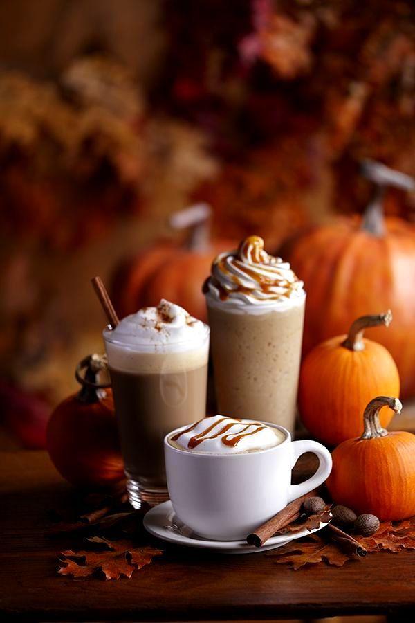 Pumpkin Spice Latte .... fall is here!! | Skinny Vanilla Latte | Pint ...