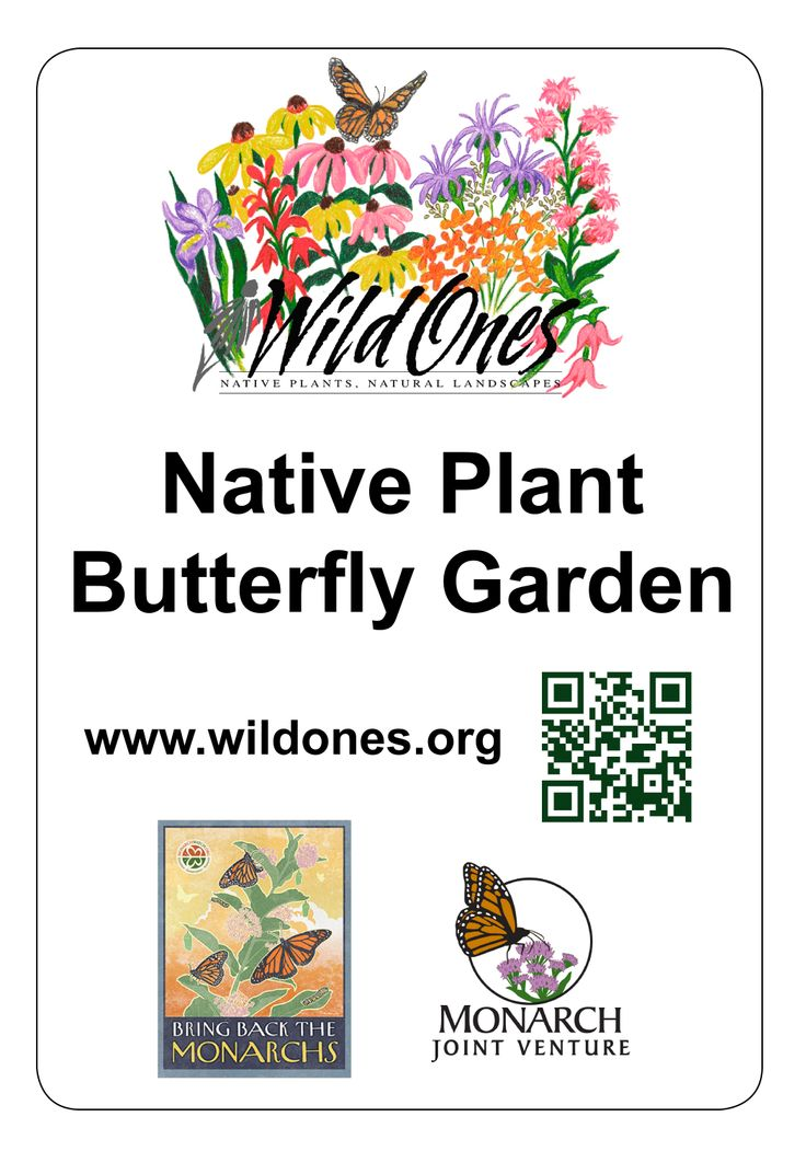 Good sign Wild Ones for Monarch Butterflies Pinterest