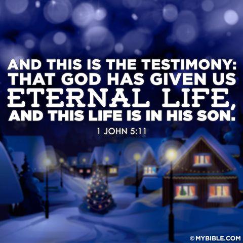 Given eternal life   Christmas   Pinterest