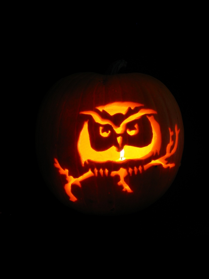 Easy owl pumpkin carving trick or treat pinterest