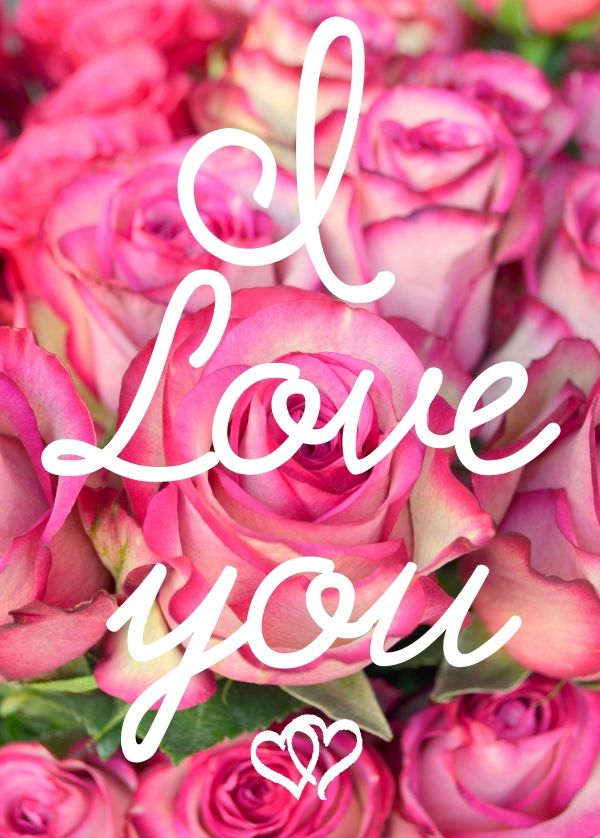 I Love You Quotes With Roses : Love You Roses